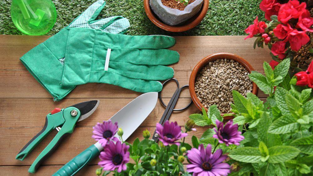 Top ten essential gardening tools houseopedia for Essential gardening tools